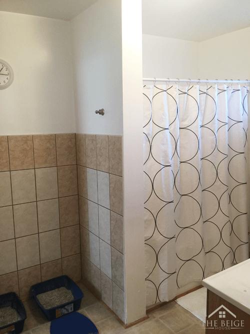 downstairsbathroom2