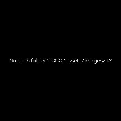 LCCC x Pochin
