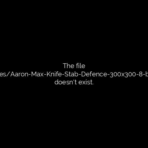 Aaron & Max Knife Stab Defence (300x300) - 8-bit