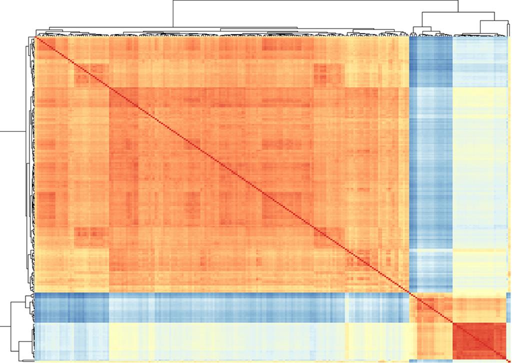 Sample Distance Matrix