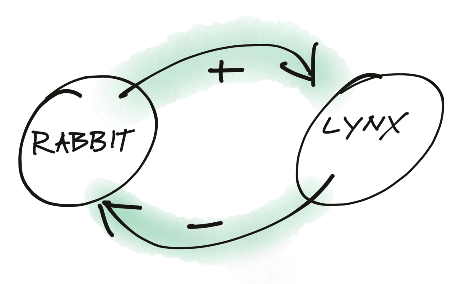 Simple Balanced Systems Model