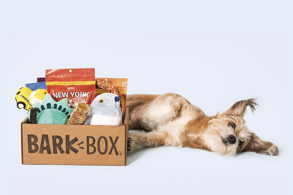 dog-gift-ideas-barkbox-treats-and-toys
