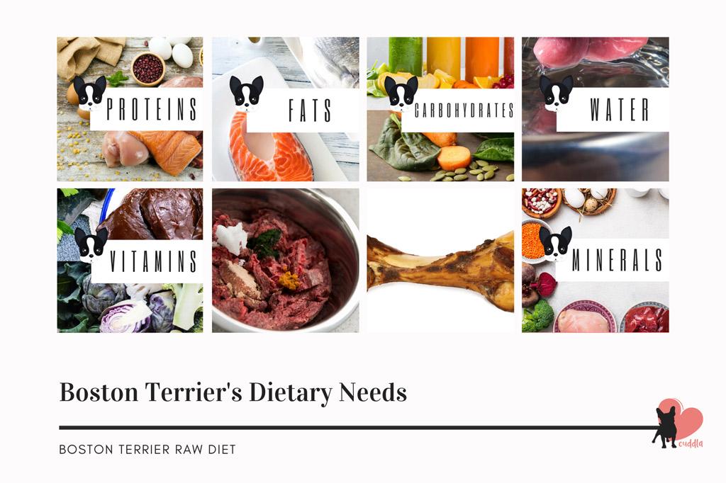 boston-terrier-raw-diet-ingredients