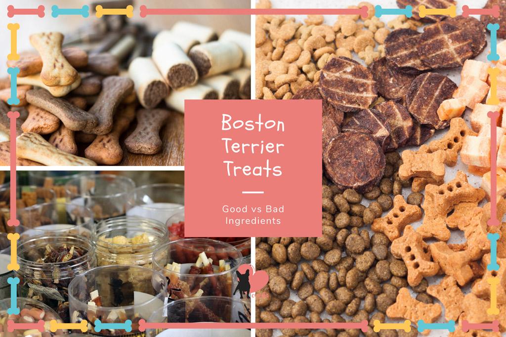 boston-terrier-treats-good-vs-bad-ingredients