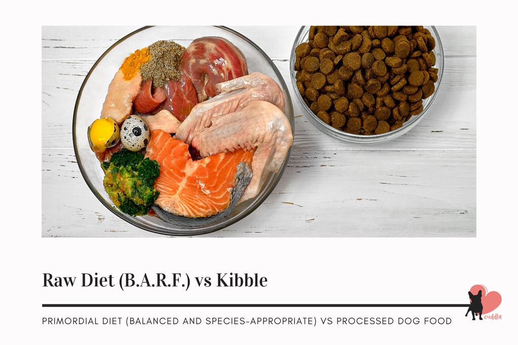 boston-terriers-diet-raw-vs-kibble