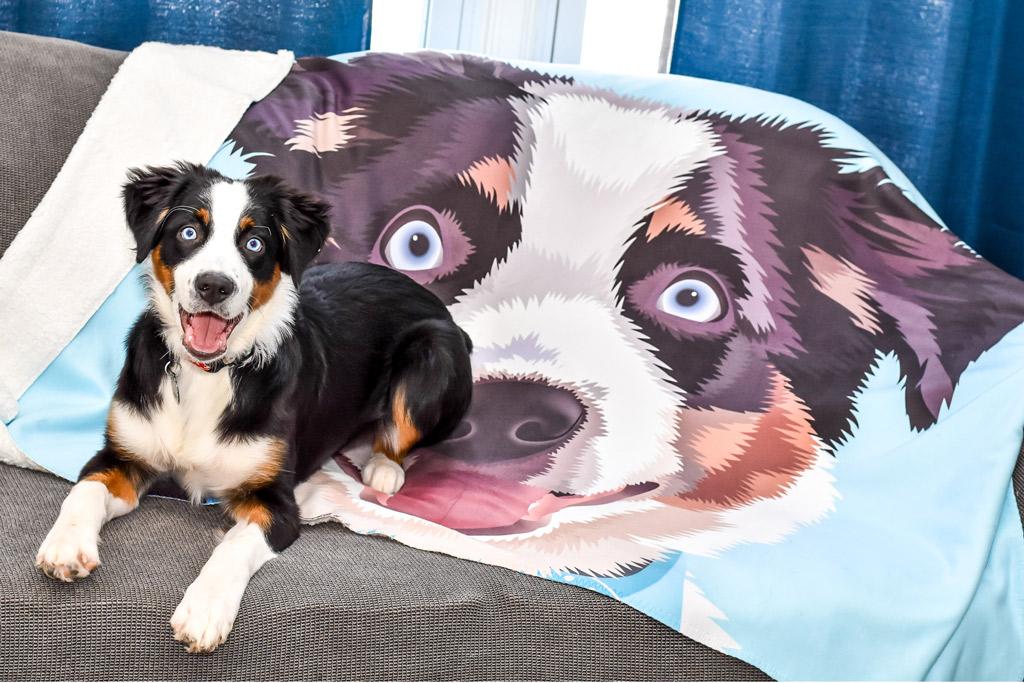 cuddle-clones-blanket