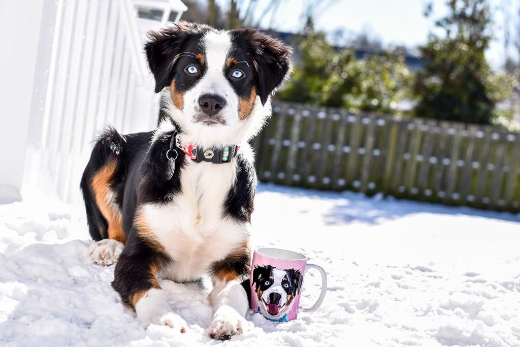 cuddle-clones-coffee-mug