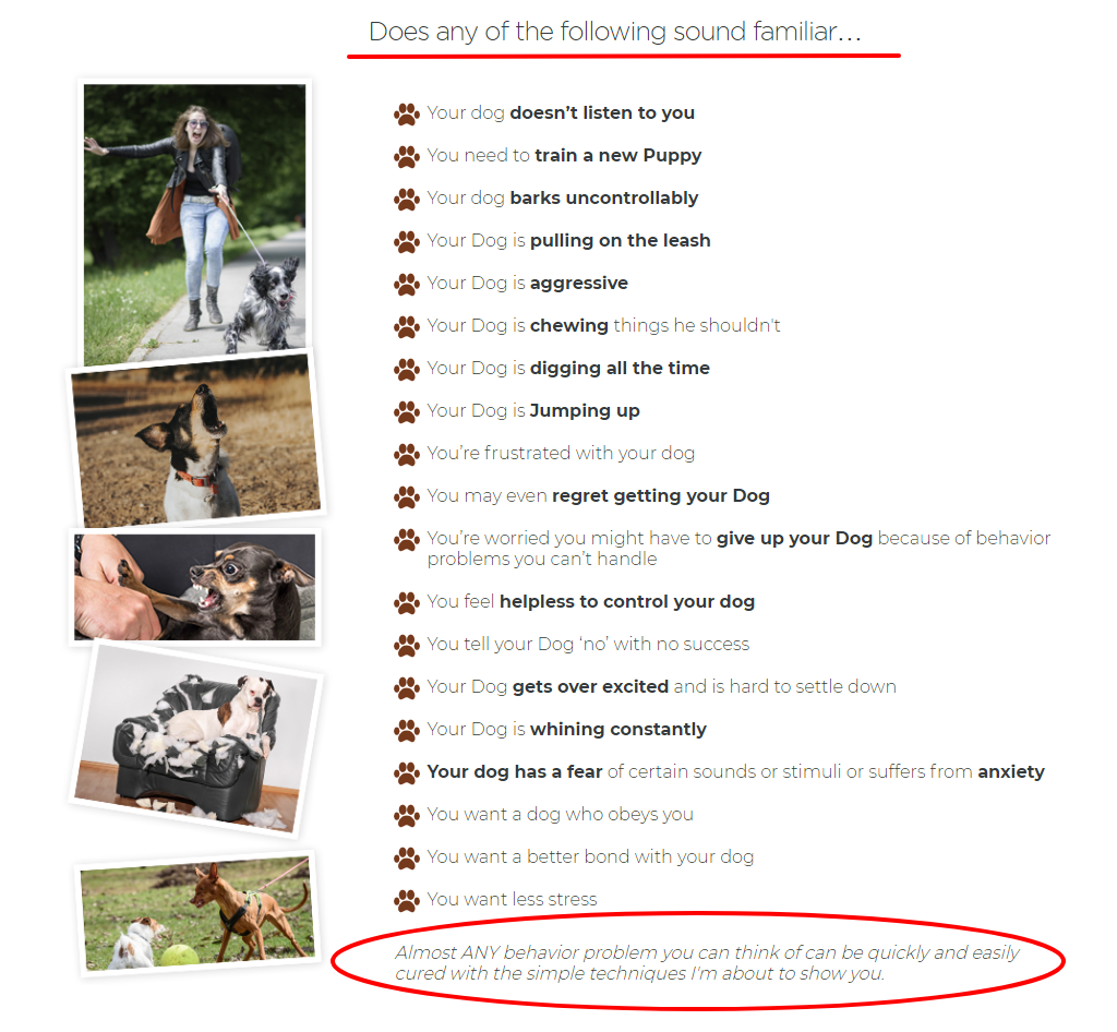 dog-behaviour-problems-list