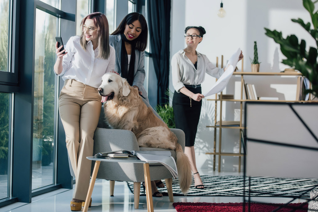 dog-benefits-at-work-4