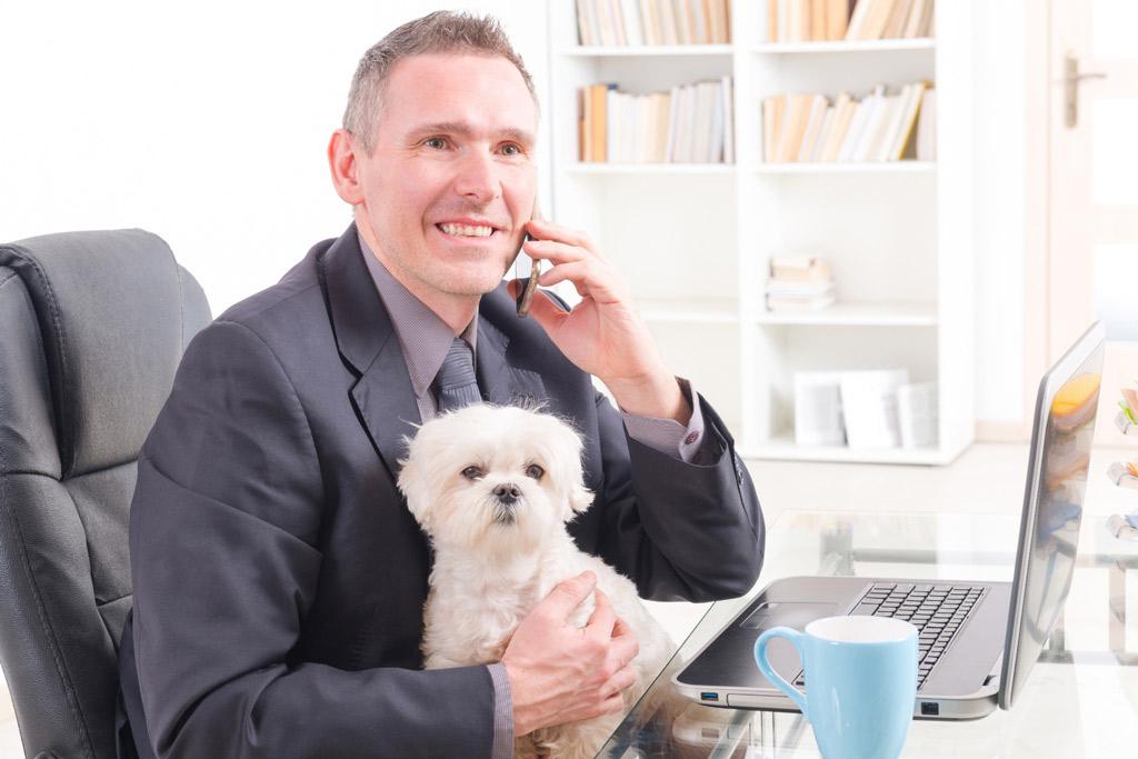 dog-benefits-at-work-5