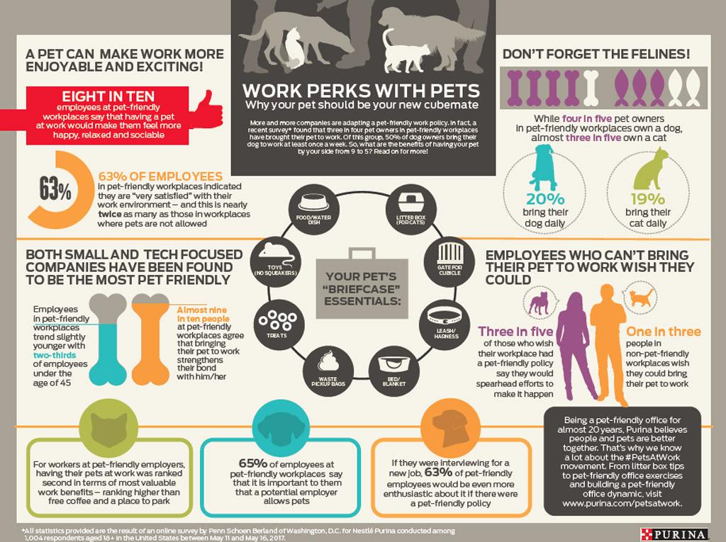 dog-benefits-at-work-survey