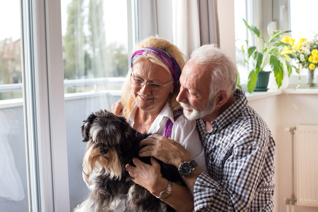 dog-benefits-for-seniors-1
