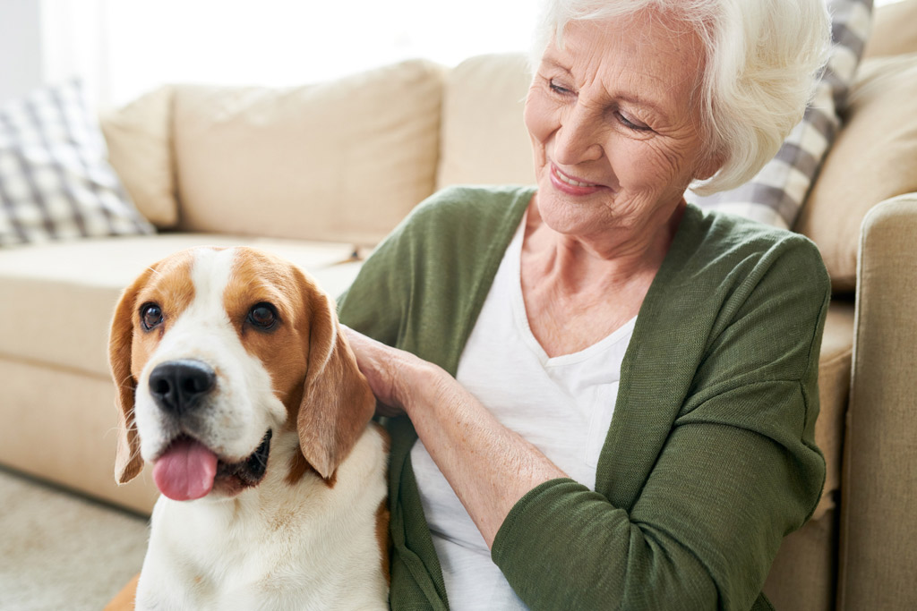 dog-benefits-for-seniors-3