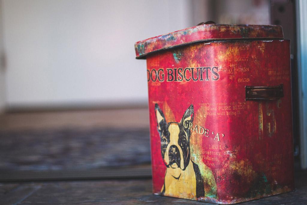 dog-biscuits-treat