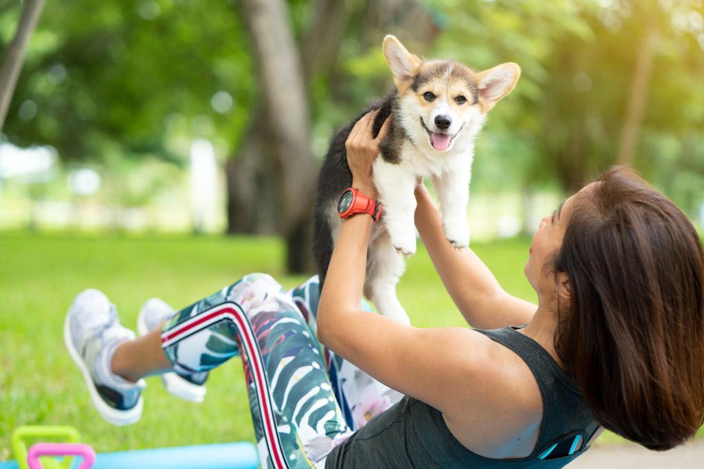 dog-exercise-needs