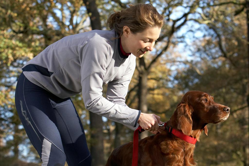 dog-exercise-off-leash