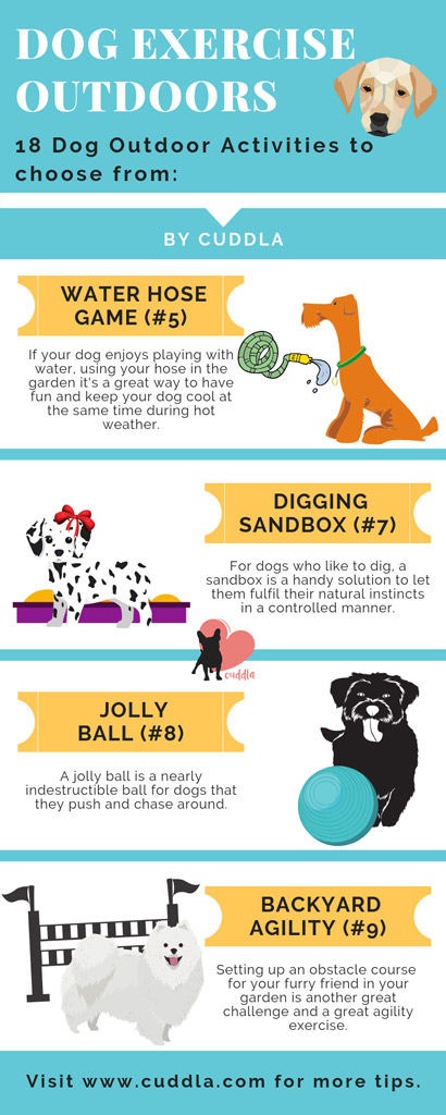 dog-exercise-outdoors-list