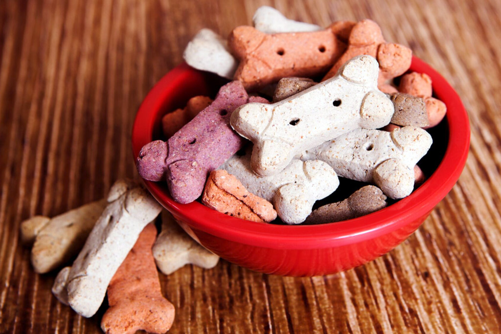 dog-food-allergies
