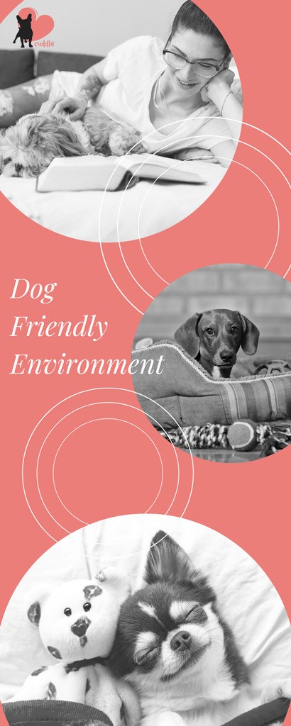 dog-friendly-environment-part2