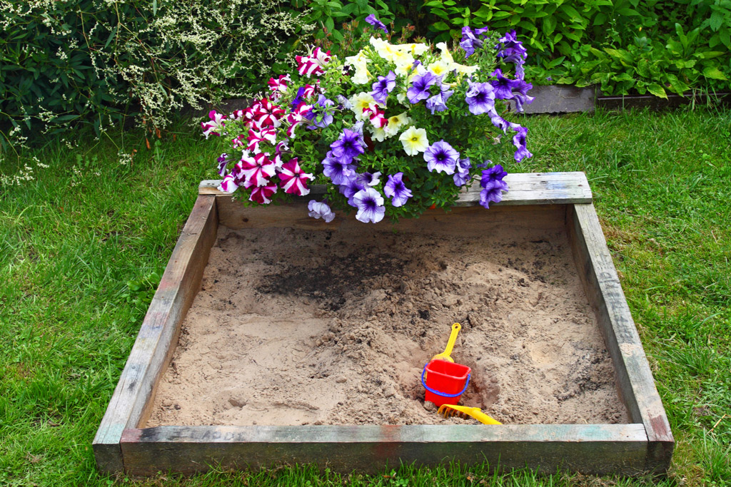 dog-friendly-garden-sandbox