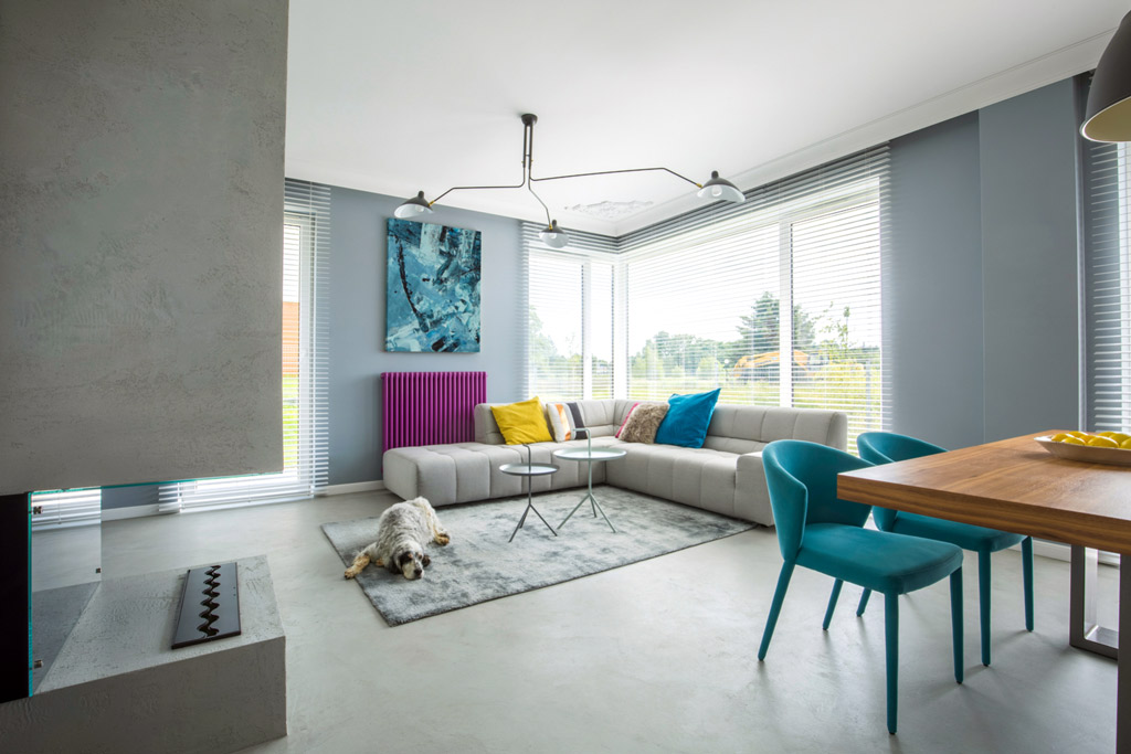 dog-friendly-living-room