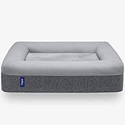 dog-gift-ideas-casper-mattress