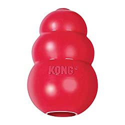 dog-gift-ideas-kong-dispenser-toy