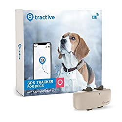 dog-gift-ideas-tractive-gps-tracker