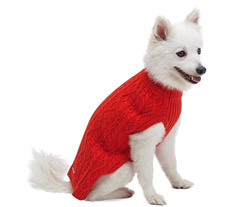 dog-gift-ideas-valentine-jumper