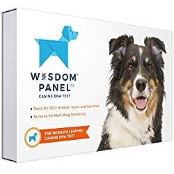 dog-gift-ideas-wisdom-pannel-dna-test