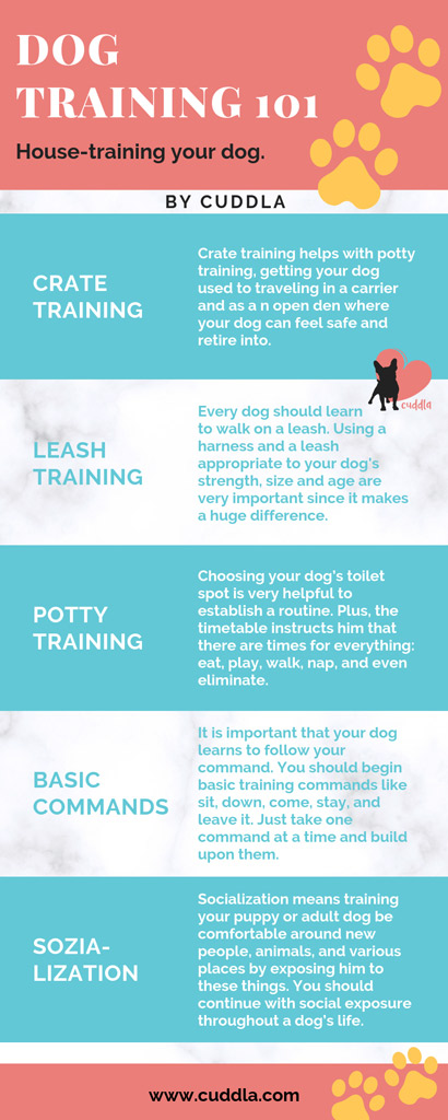 dog-house-training-steps