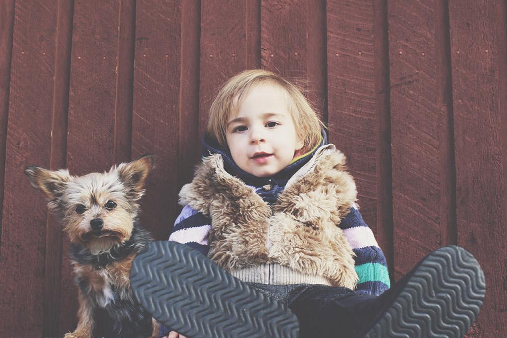 dog-stress-benefits-for-kids