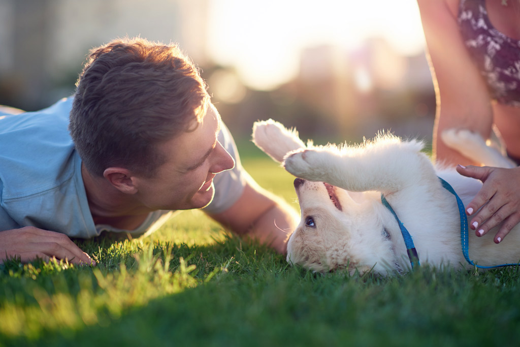 dog-training-benefits-bonding
