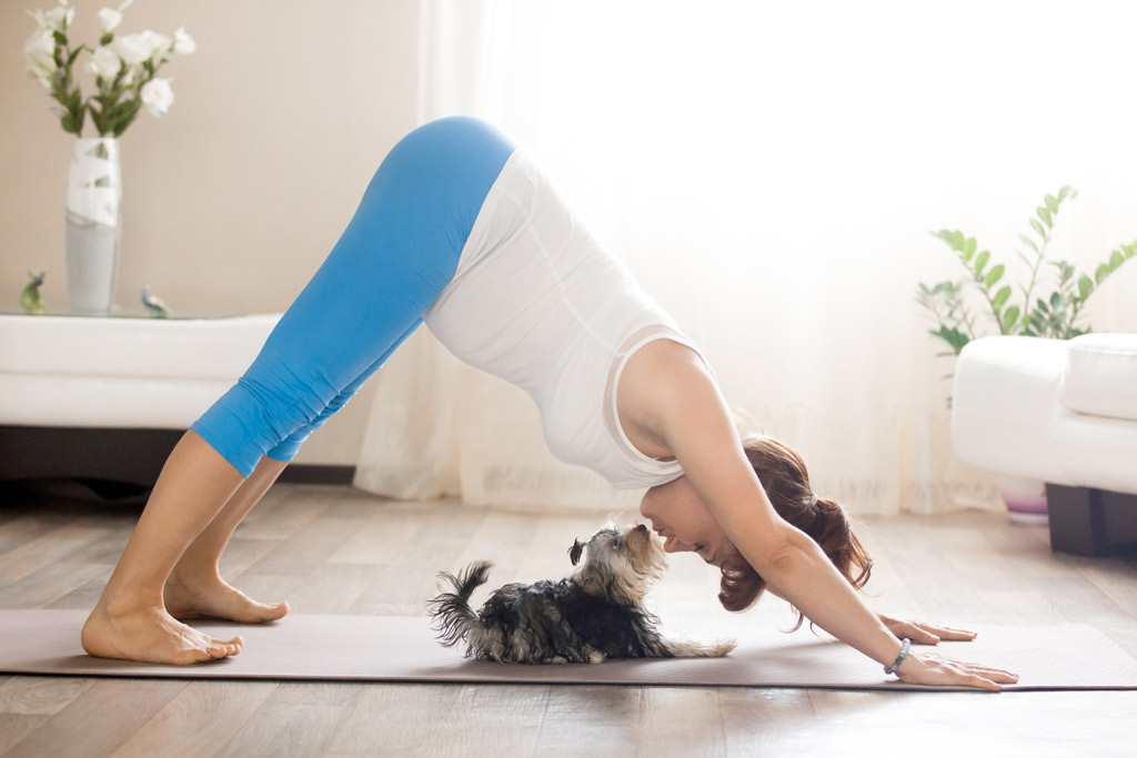 dog-yoga-pose