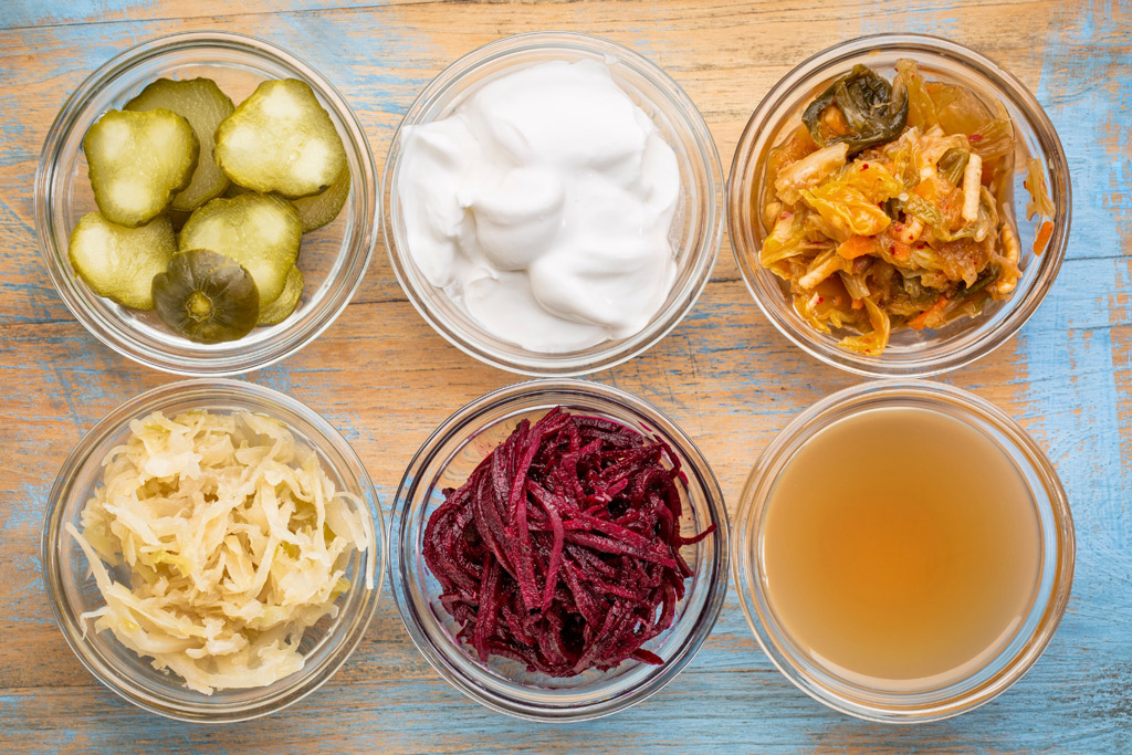 fermented-food-for-dogs-collage