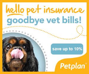 petplan-banner-saveupto10