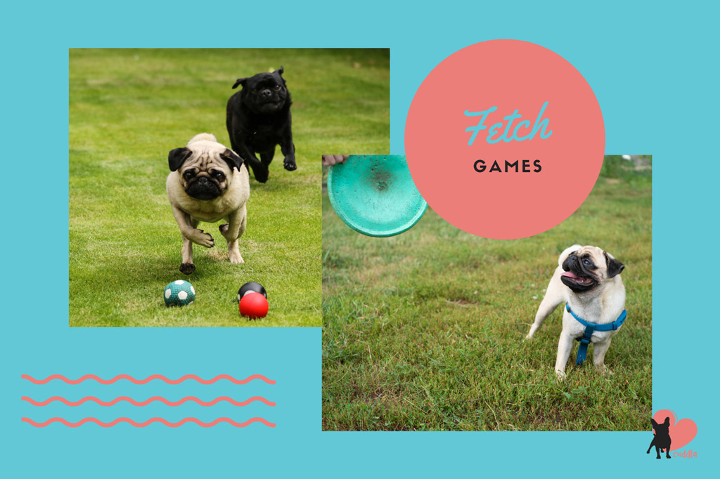 pug-activities-fetch-games