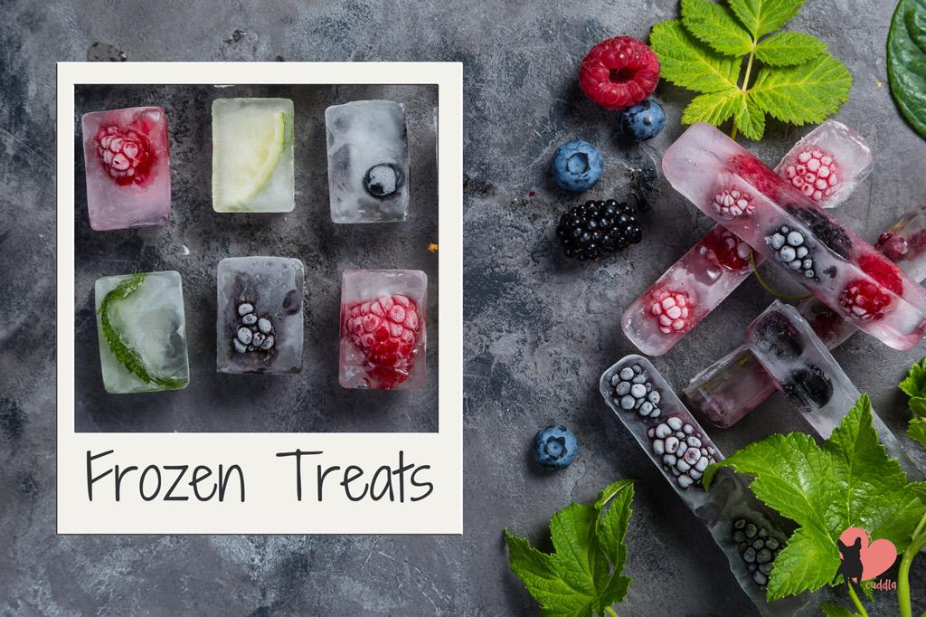 pug-teething-remedy-frozen-treats