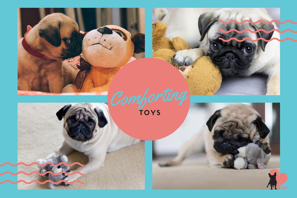 pug-toys-comforting