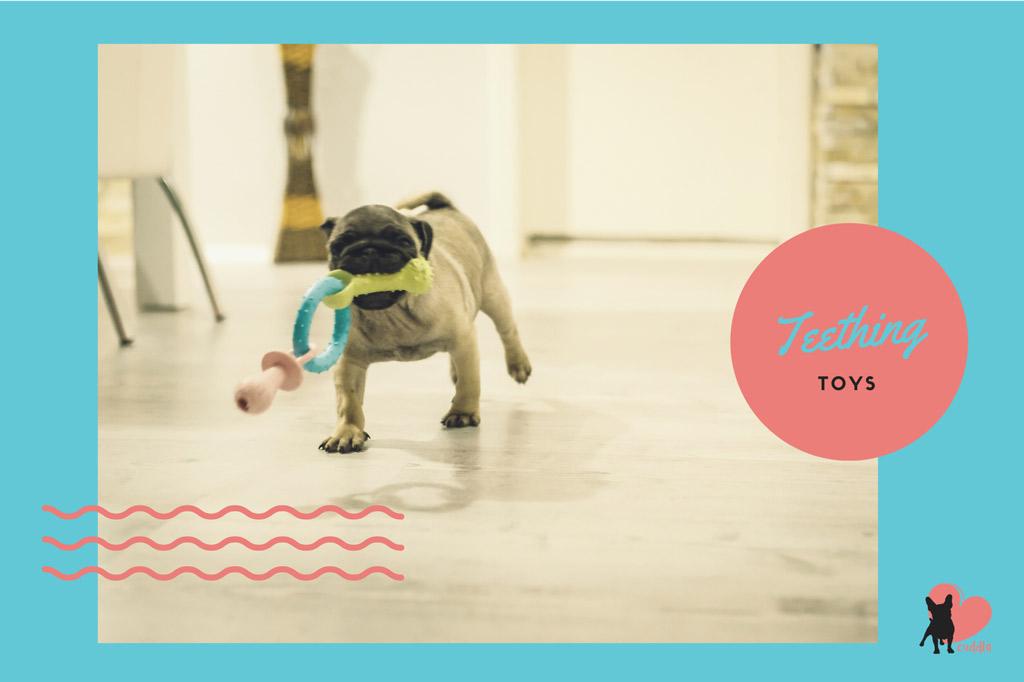 pug-toys-teething