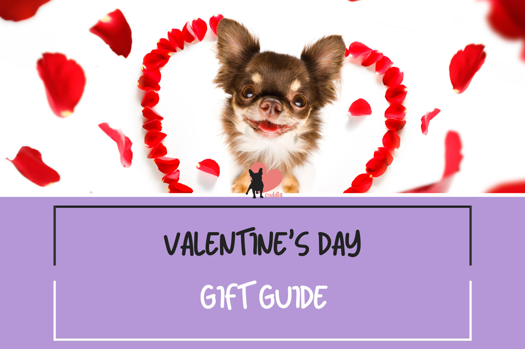 valentines-day-gift-guide-for-dog-owners