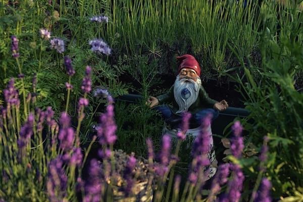 meditating gnome