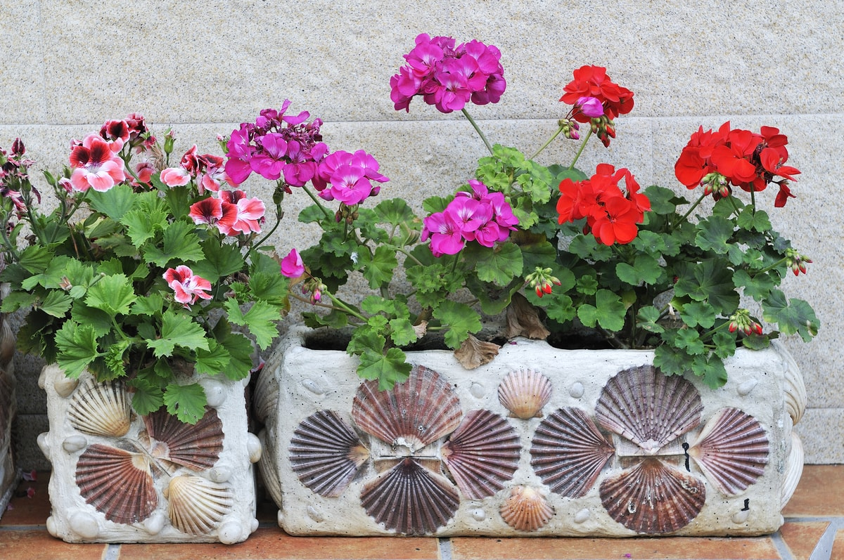 Cement Tile Planter Box