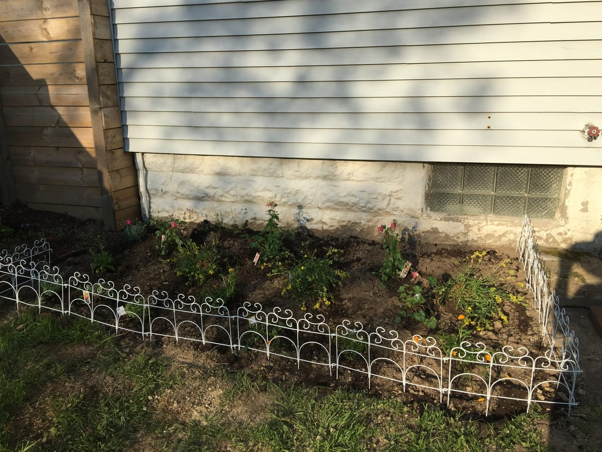 DIY planting
