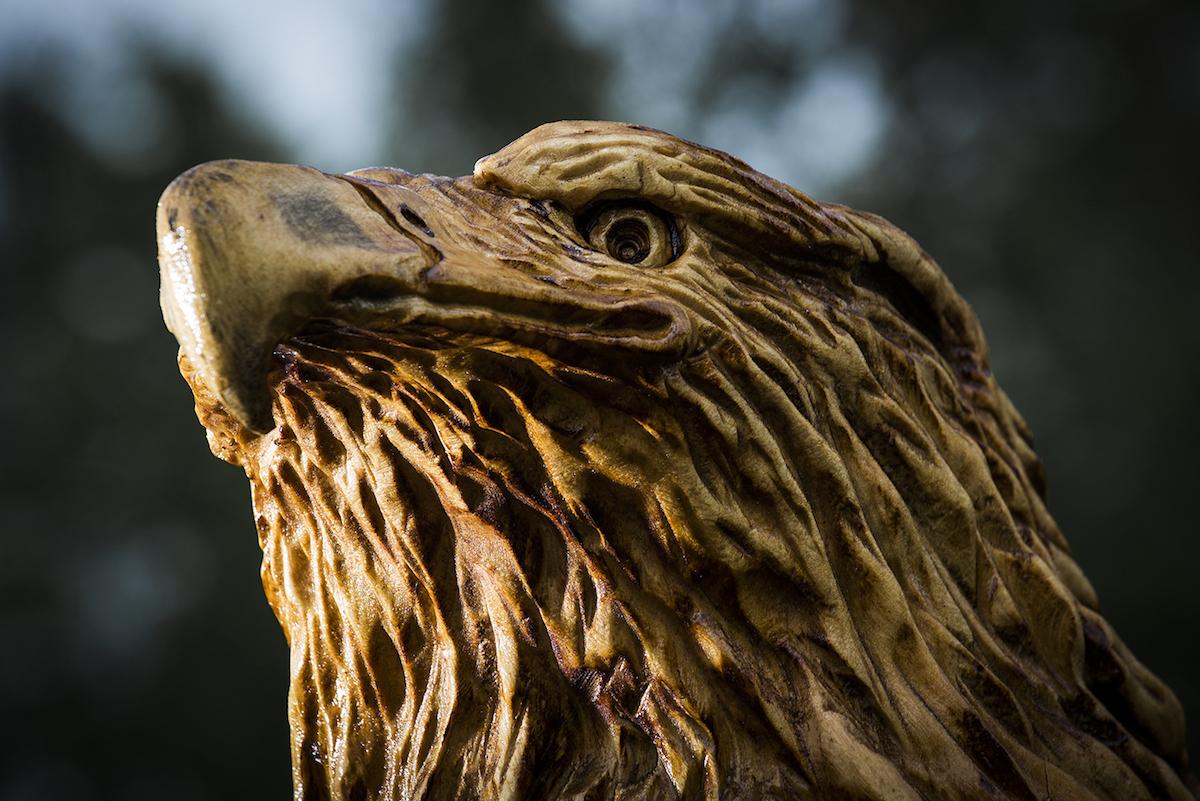 cwood-carvers-solo-eagle-web