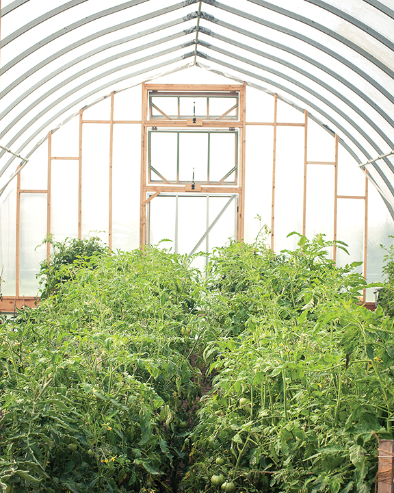 Roy'L Acres Farm