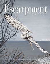 Escarpment Magazine 2018 Winter