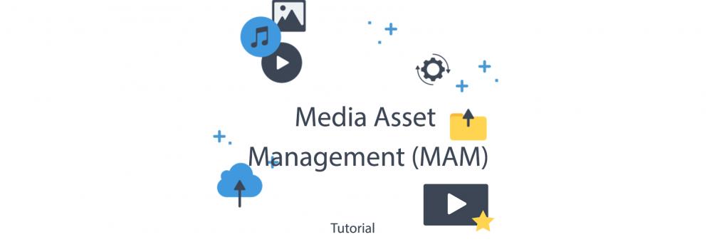 Publitio - Media Asset Management (MAM)