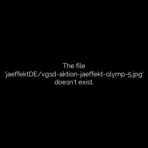 "VGSD Aktion ""Der Weg zum Website Olymp"""