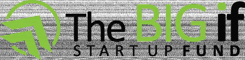 The BIG IF Start-Up Fund Logo